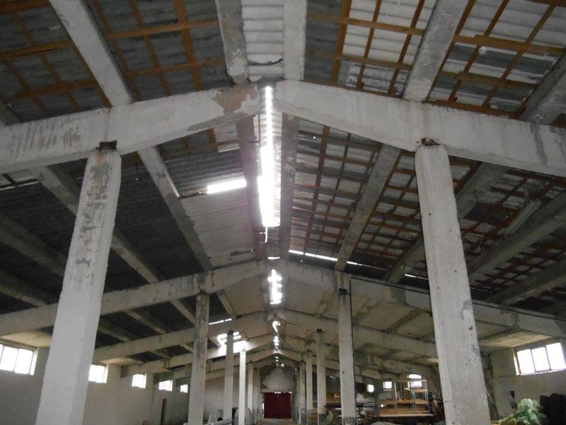 Sp. industrial-hala,Horlesti,open space,938 mp, teren 2450 mp