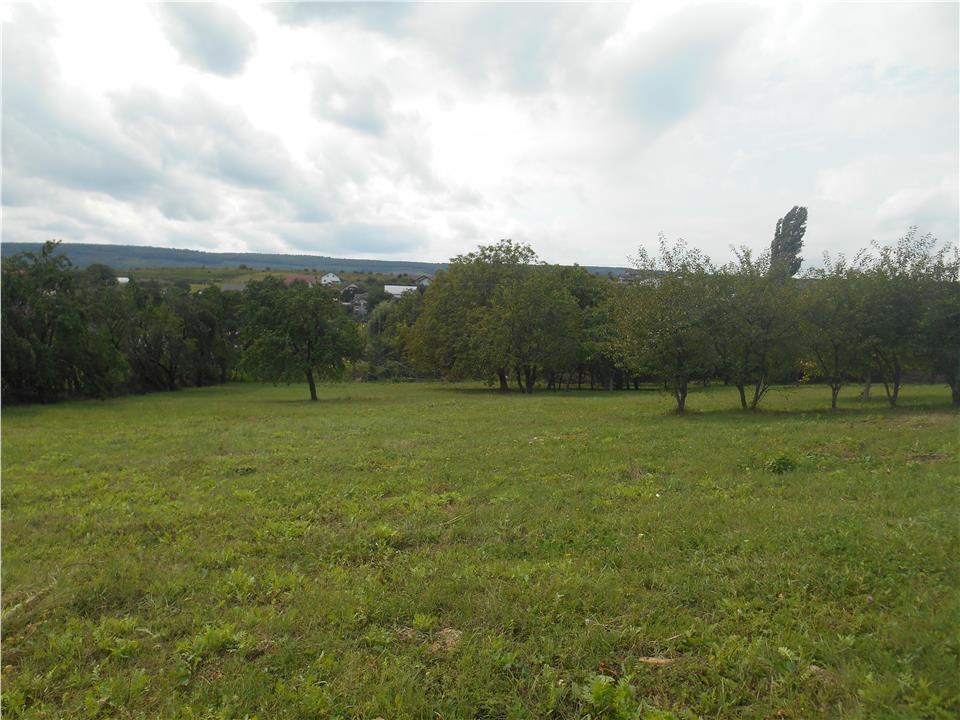 Parcele de teren de la 600 mp intravilan Tomesti